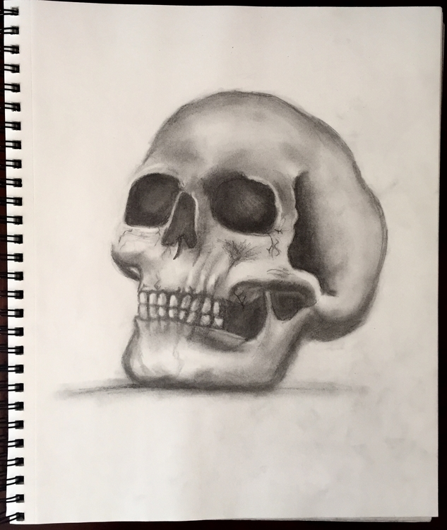 Skull - illustration, drawing, skull - katiecorley14 | ello