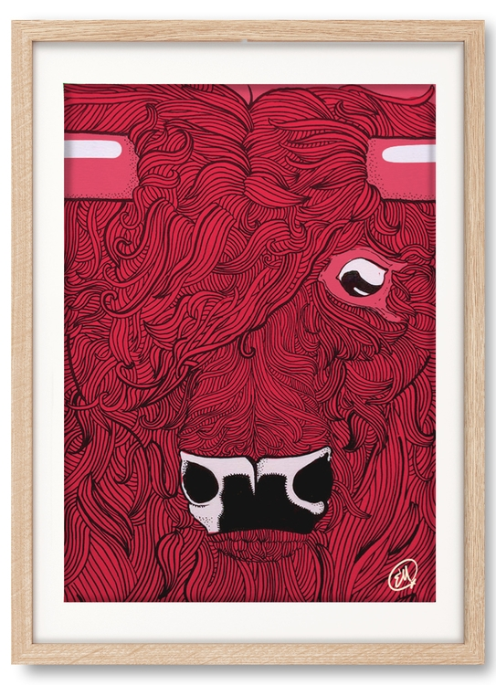 illustration, handdrawn, bull - emanuelem | ello