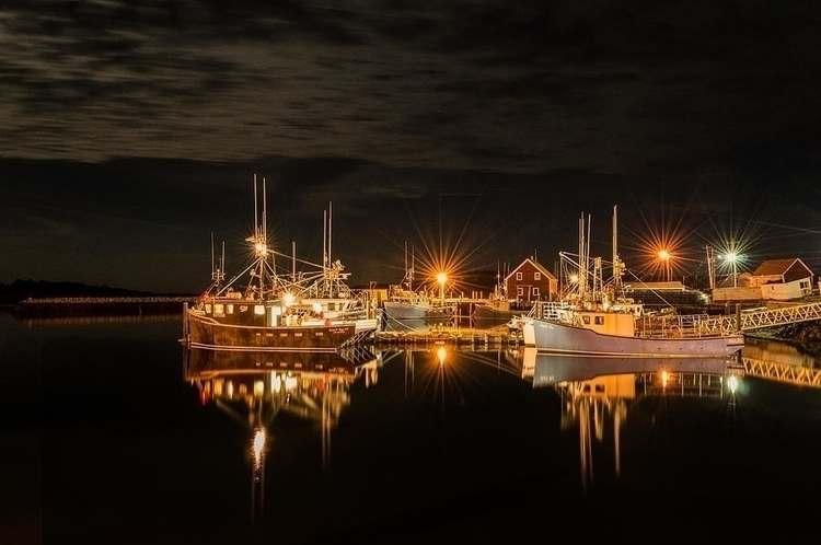 Cove Reflections - harbour, night - garvinhunter | ello