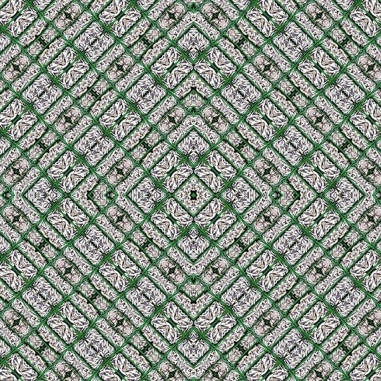 Fractal - 3, photography, conceptart - fabriciobranco | ello