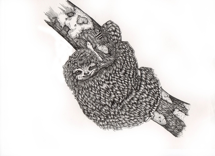 Genderless Sloth, scarce, rarer - rebeccalee-1135 | ello