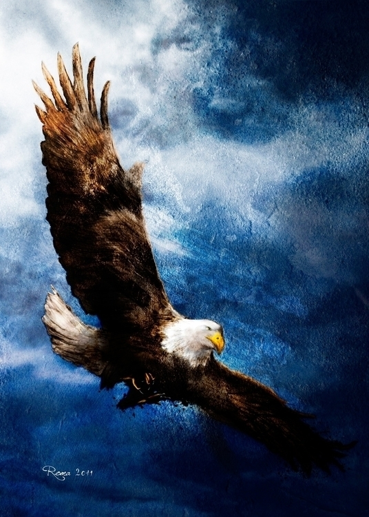 Eagle - romaartwork | ello