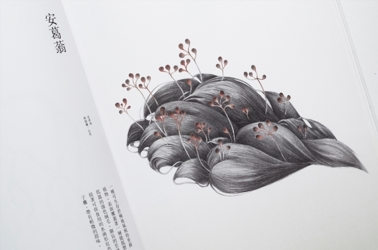 food, illustration, design, drawing - yuhsuan | ello