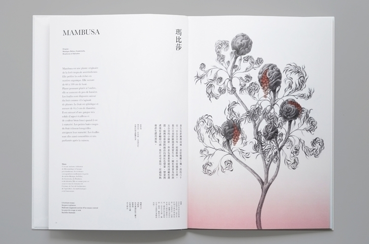 illustration, drawing, typography - yuhsuan | ello