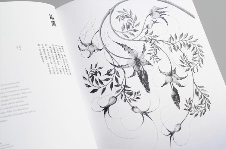 illustration, drawing, typography - yuhsuan | ello