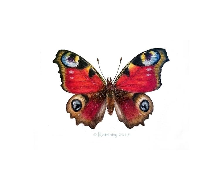Butterfly - illustration, painting - katrinity-1318 | ello