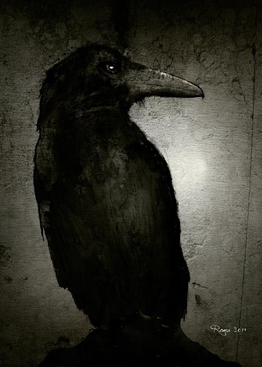 Crow - romaartwork | ello