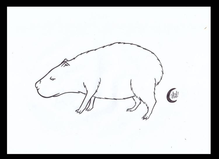 Capybara - illustration, animalillustration - h3ml0ck | ello