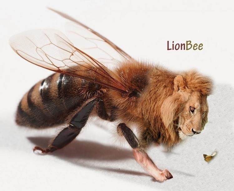 lion_bee - mirsini_anastasiou | ello