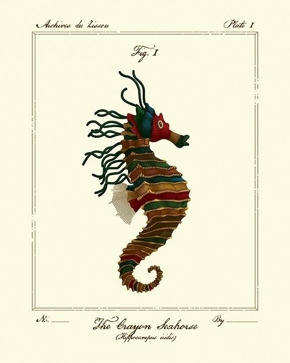 Life Aquatic Scientific Illustr - tracieching | ello