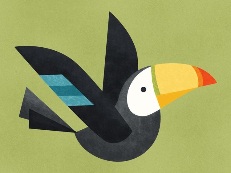 Toucan - evalovisa | ello