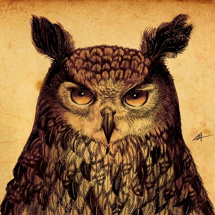 owl, largeowl, night, nightbird - kamaarts | ello