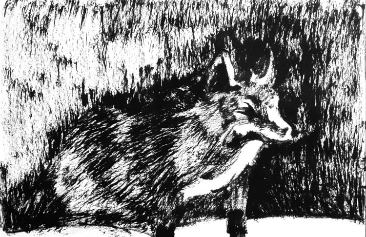 Fox - illustration, drawing, animal - sijie_ng | ello
