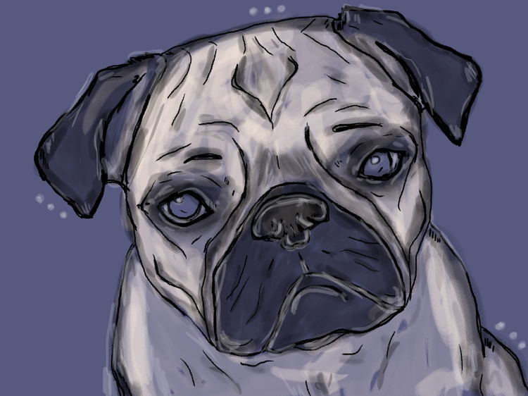 Peggy pug //wacom intuos ps - dog - panikot | ello