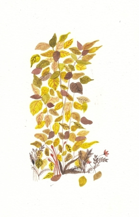 drawing, autumn, watercolor - spoto | ello