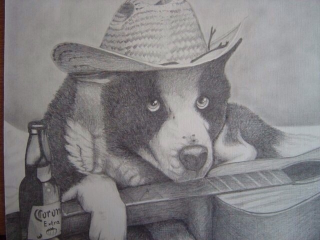 Graphite. Pet portrait - graphite - chriskilue | ello