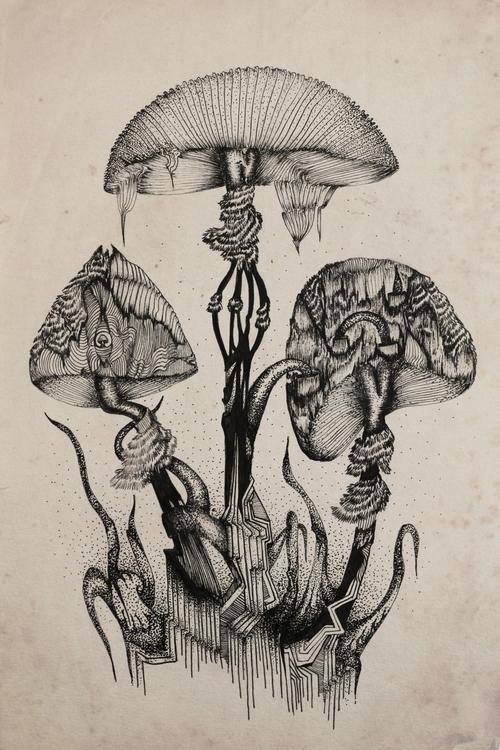 Mushroomala - illustration, mushrooms - ibtisam | ello