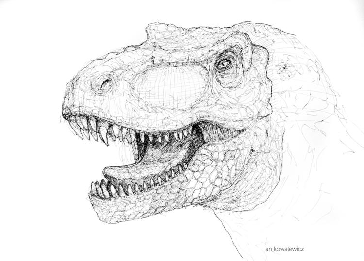 50 70 cm, Artpen - drawing, dinosaur - jandraws | ello