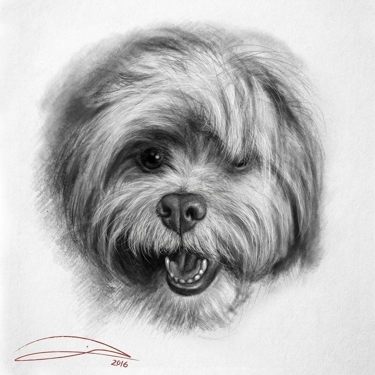 print artwork 'PUPPY FACE', pen - baruchinbar | ello