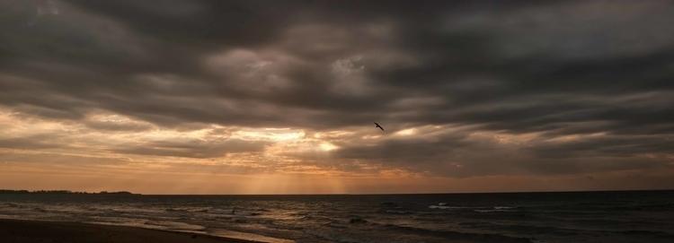 Sunrise Sunbeams - waynemiller | ello