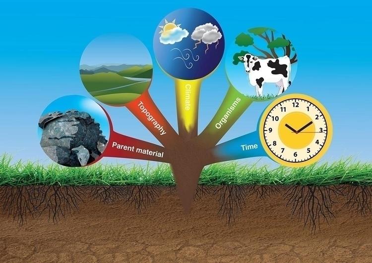 Elements create soil - illustration - kiwi-1078 | ello