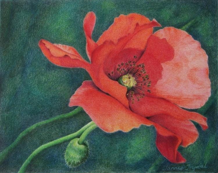 Remembrance 8 10 Colored Pencil - tannis-8715 | ello
