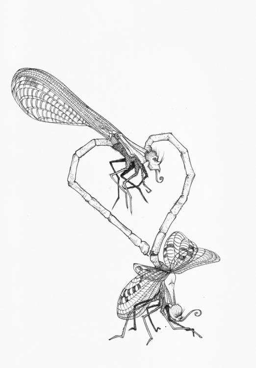Love bugs - illustration, drawing - thecreativefish | ello