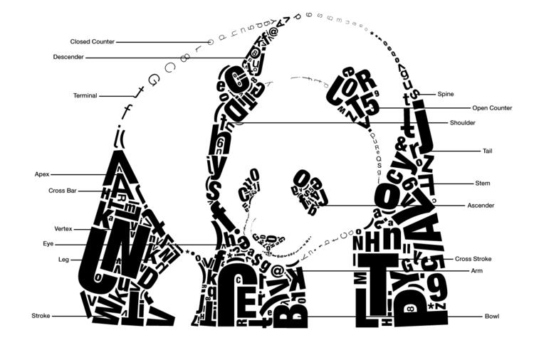 Labeled Typographic Panda - design - jessicaredmond | ello