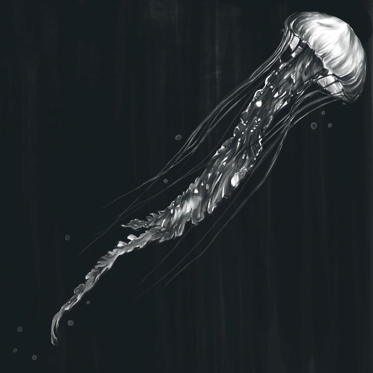 Jellyfish --Digital Illustratio - adamdunt | ello