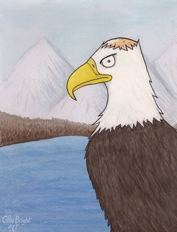 Bald Eagle - illustration, cartoon - olliebright | ello