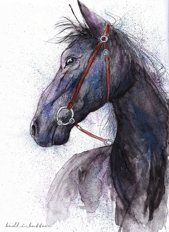 Horse, water colour - illustration - budhi | ello