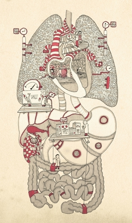 body - illustration, drawing, humanbody - snarlik | ello
