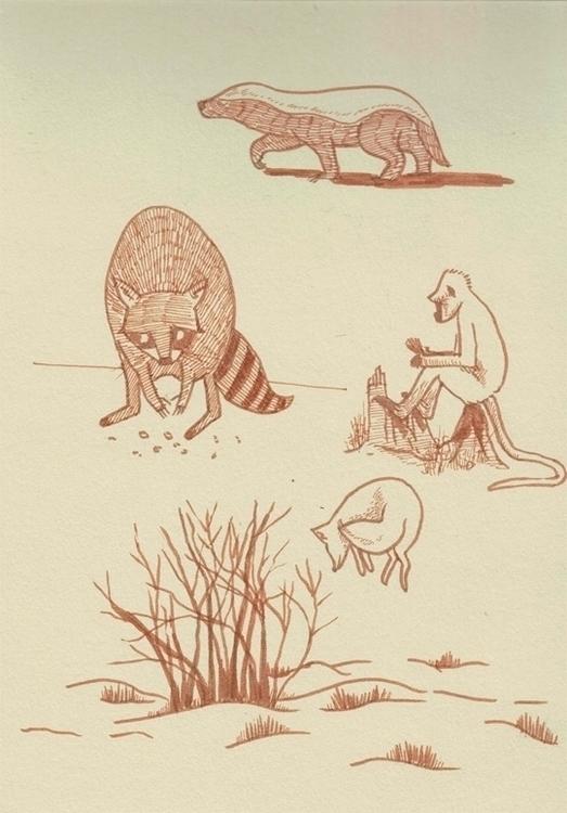 studies - brushpen, pittpens - cat-8775   ello