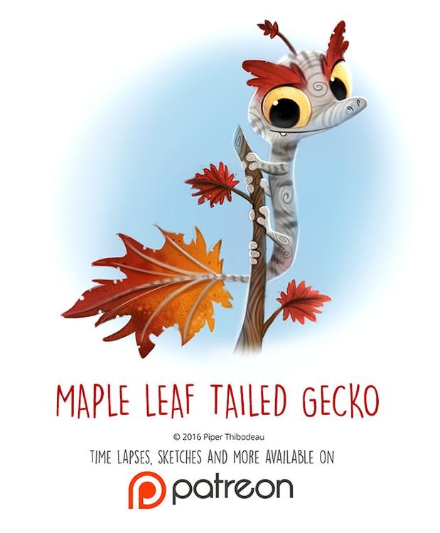 Day 1443. Maple Leaf-tailed Gec - piperthibodeau | ello