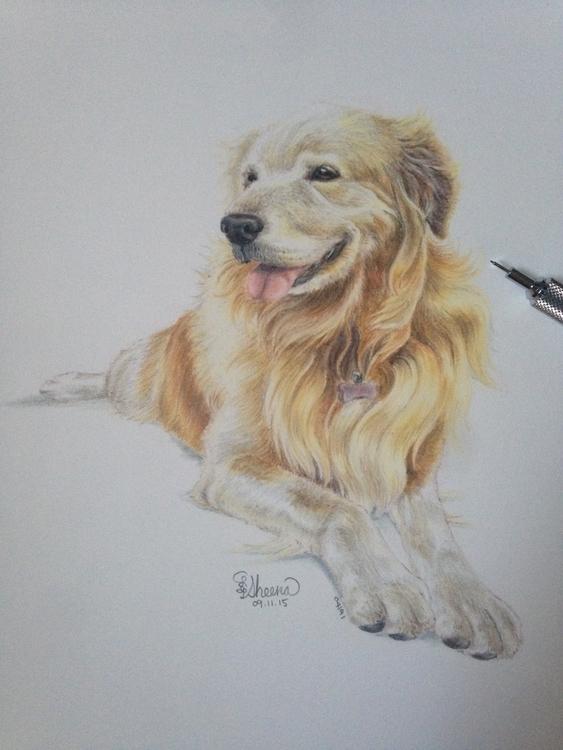 dog portrait: Mini - illustration - sheenahsinlee | ello