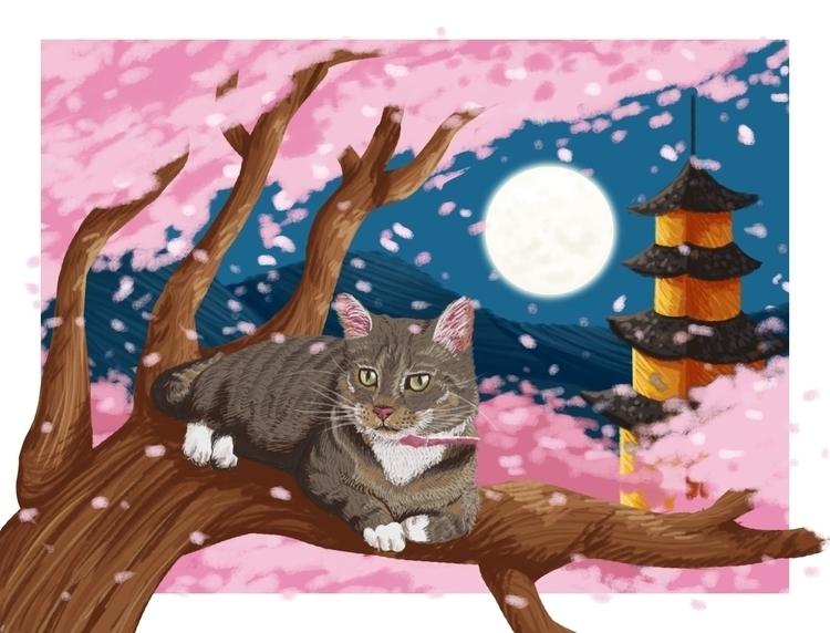 Cat - cat, pet - donamarie | ello