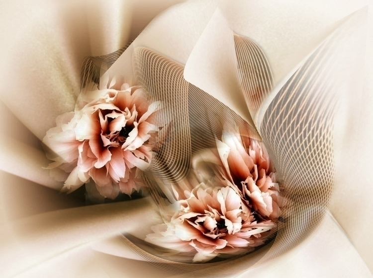 FLY - flowers, digital, roses, curves - carmenvelcic | ello