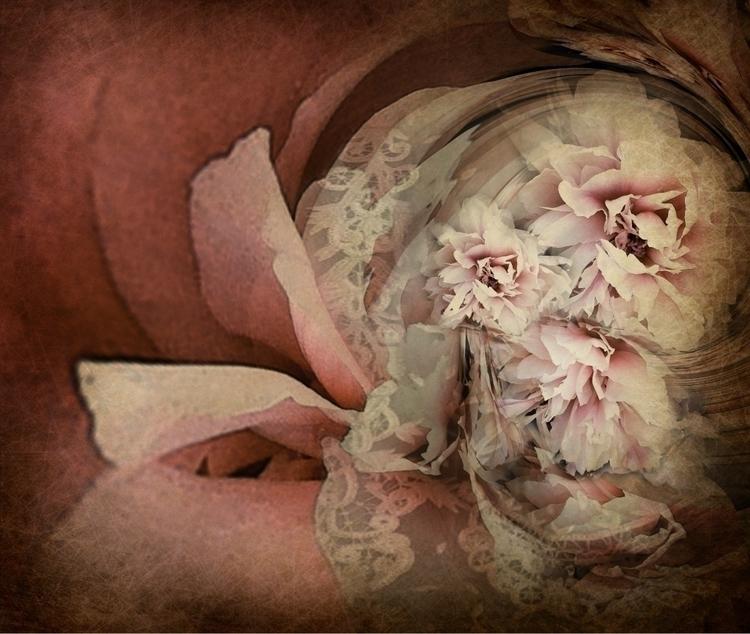 PEONIE - digital, abstract, flowers - carmenvelcic | ello
