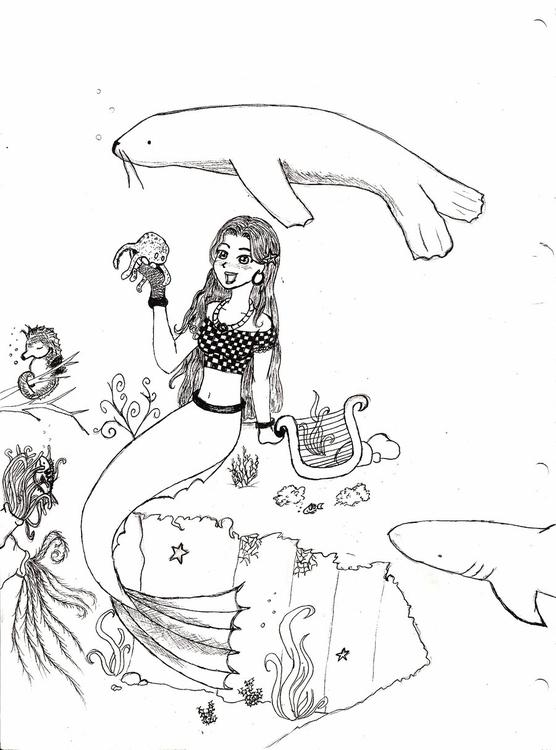 manga, anime, seal, shark, seahorse - amandaloyolla | ello