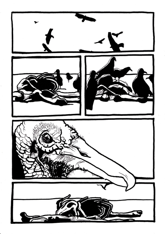 vultures_São Paulo, 2015 - illustration - renataribak | ello