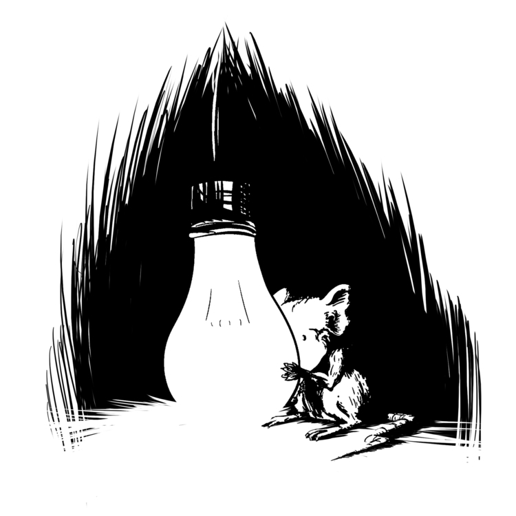 Light - mouse, light, illustration - whitewall | ello