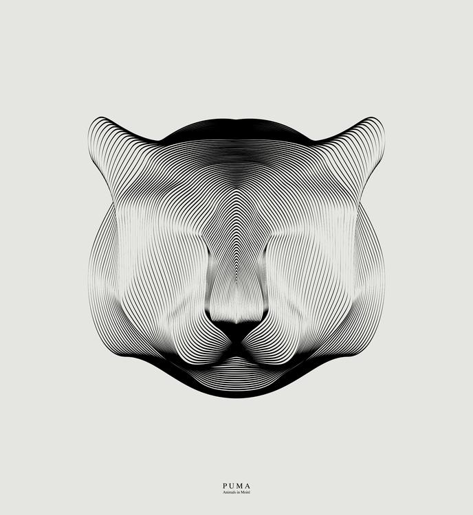 Puma | animals moiré - lineart, digitalart - andrea-2262 | ello