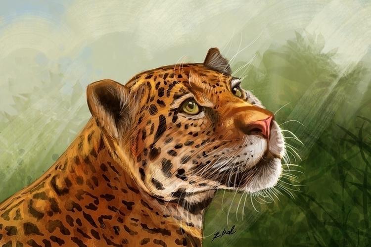 Jaguar - animal, animalart, animalartist - rkamalart | ello
