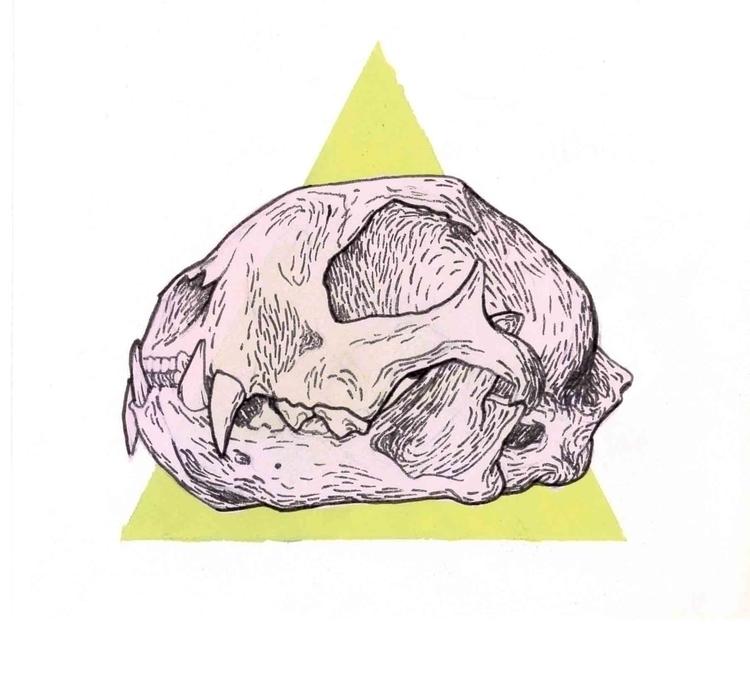 Bobcat Skull - gingerfu-5813 | ello
