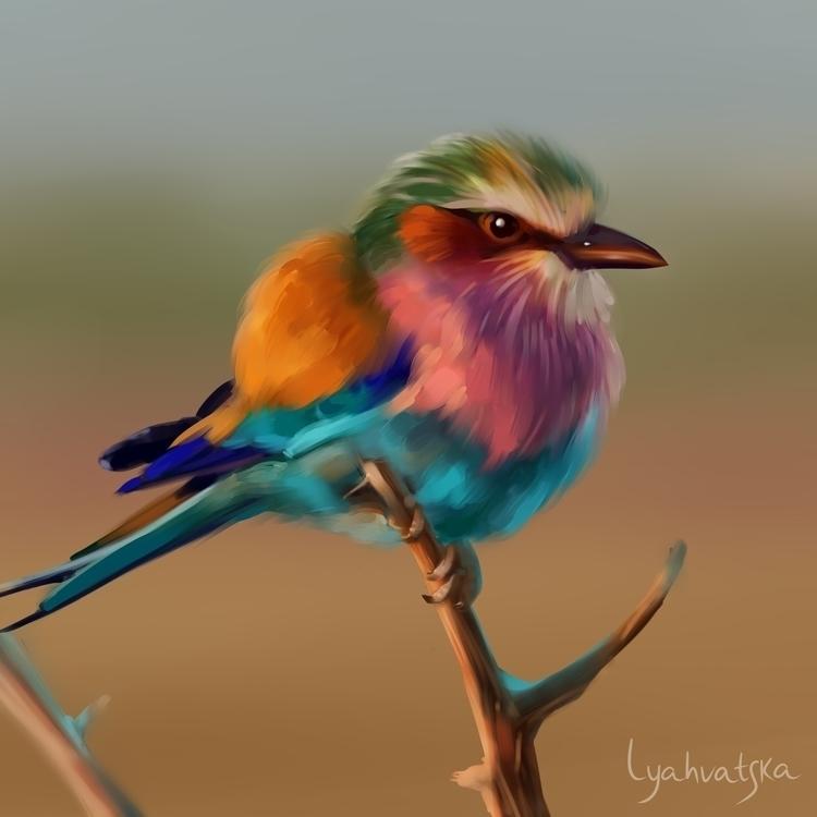 Bird - bird, digitalart, art, color - natalialyahvatska | ello