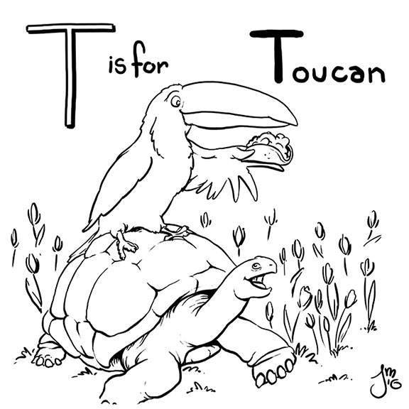 Toucan Part animal alphabet col - jasonmartin-1263 | ello