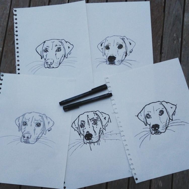 illustration, drawing, dog, ink - salutnoe | ello