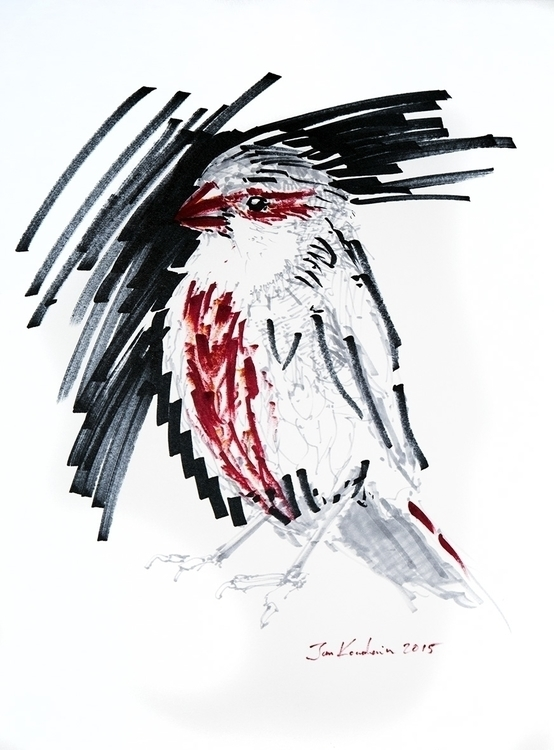 bird, sketch, markers, jandraws - jandraws | ello