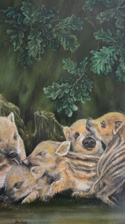 Wild Hogs - illustration, pastels - henrieke-4064 | ello