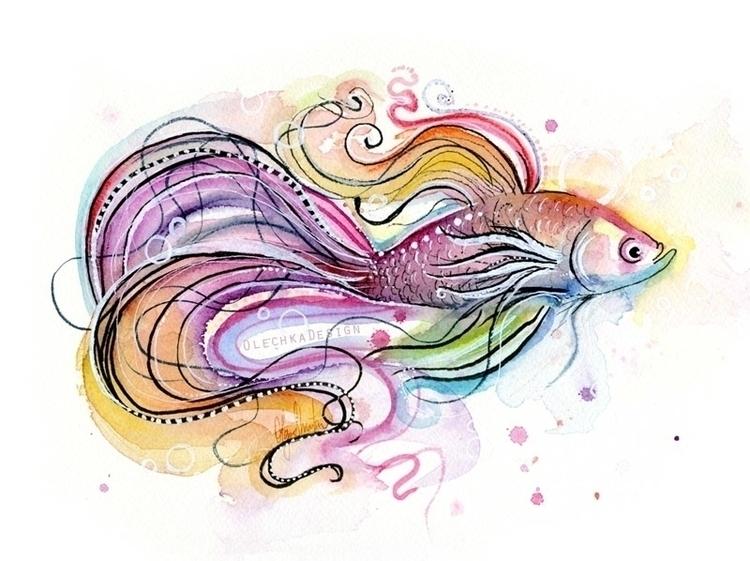 Betta Fish - fish, betta, bettafish - olechkadesign | ello